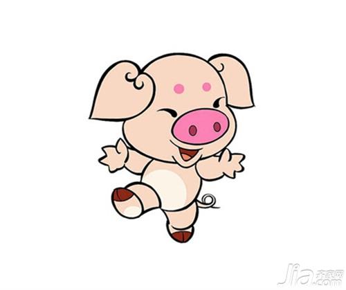 属猪配哪个属相最好