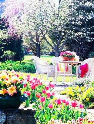 花园庭院效果图全图