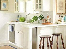 小小绿植作用大 14款绿植扮靓厨房