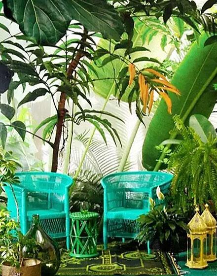 热带风情绿色家居搭配