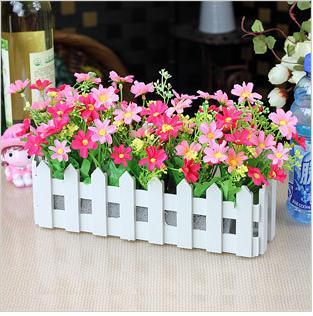 窗型花器养护