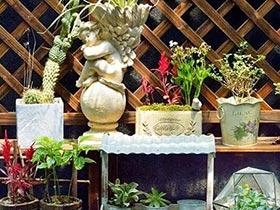 容器也能变花园 10个角落花园设计