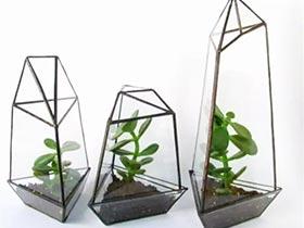 玻璃与绿植更配 11个创意玻璃绿植设计