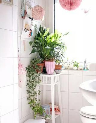 清新卫生间绿植装饰图