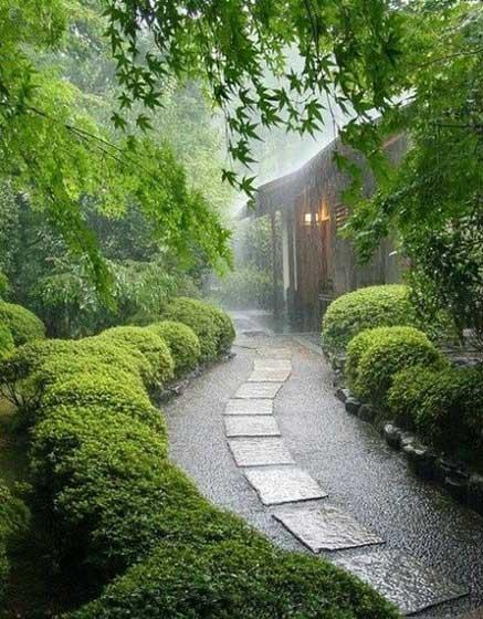 雨中庭院实景效果图
