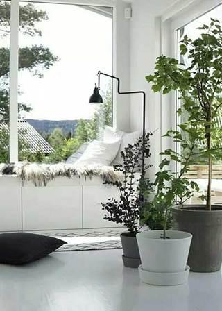 白色系室内花园图片大全