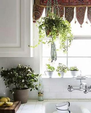 厨房窗户窗帘效果图