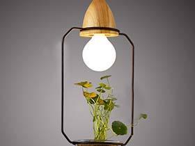 用绿色来亮眼  10个创意植物吊灯图片