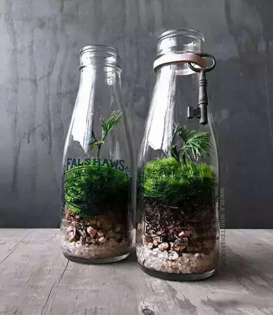 ▼一杯一世界,红酒杯也能带来禅意~-论种花的正确打开方式,不要太美