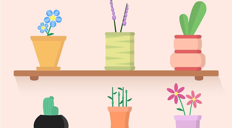 新装修的房子放什么植物好 什么植物是除甲醛好帮手