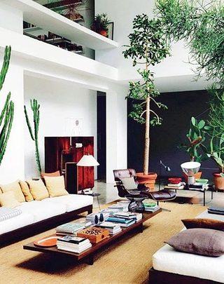 走廊绿色植物设计实景图