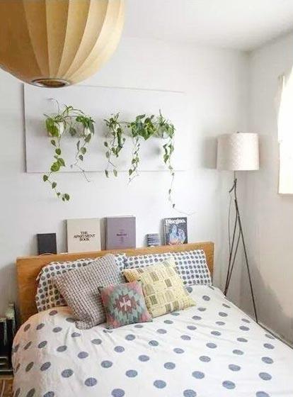 卧室背景墙植物摆放图