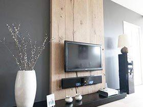 原始的视觉感受  电视墙装修效果图大全