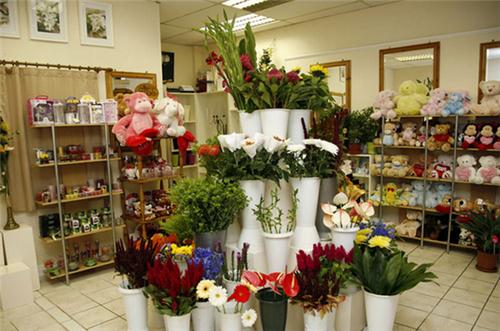 该图中这款花店设计整体给人很温馨的感觉,柔和的装饰色彩 各类可爱图片