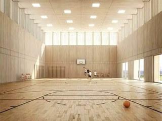 体育馆设计篮球馆效果图