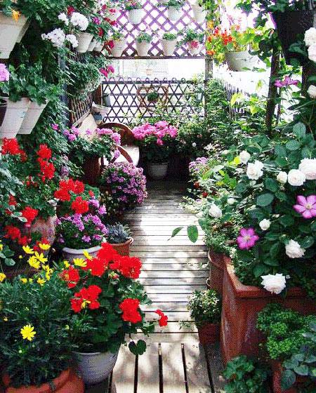 阳台花园装饰摆放图