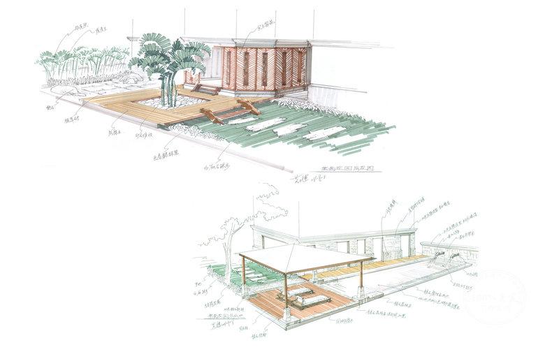 画花园的步骤图片