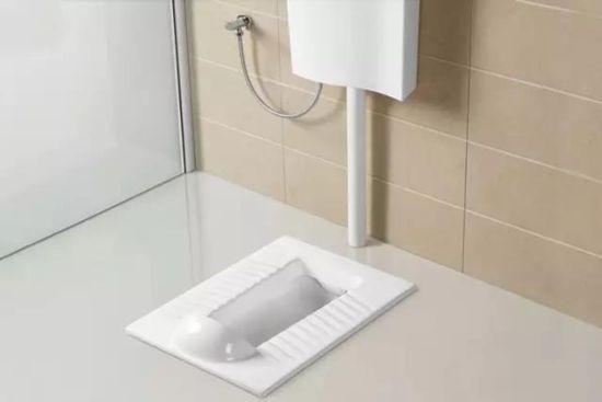 蹲厕的水管结构图