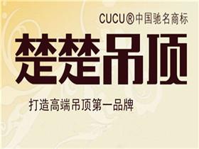 北京TCL吊顶齐家店