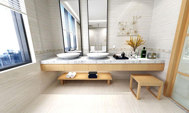 欧式 卫生间3D效果图