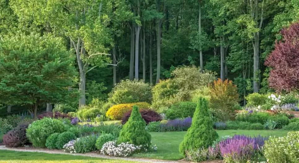 英式花园营造要点,助力你的自然风花园梦