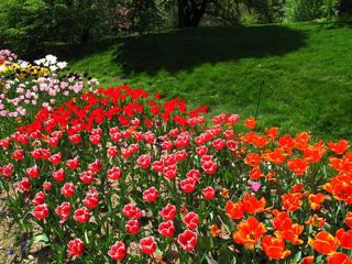 植物公园设计效果图案例