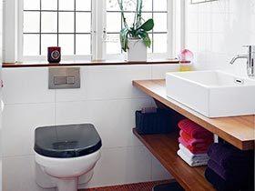 空间大整改  10个小户型卫生间设计图