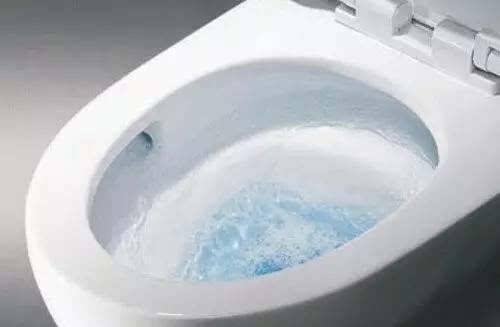 模仿真花的卫生间堵水该怎么办六个卫生间就好办了