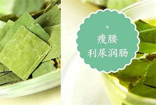 荷叶茶有什么功效 荷叶泡水喝的禁忌