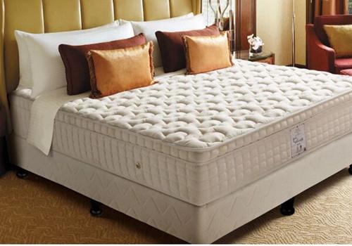 金可儿家居加盟流程有哪些 金可儿床垫有何特点